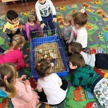 Friedensdorf-Hilfe in Rumänien wird wertgeschätzt